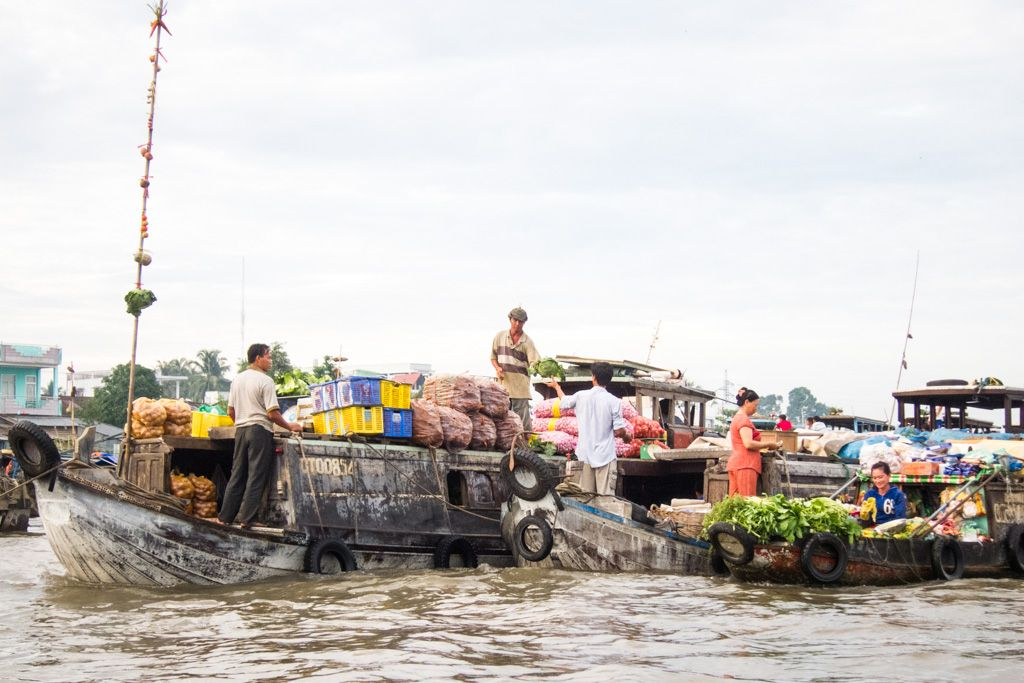 mekong delta on your own