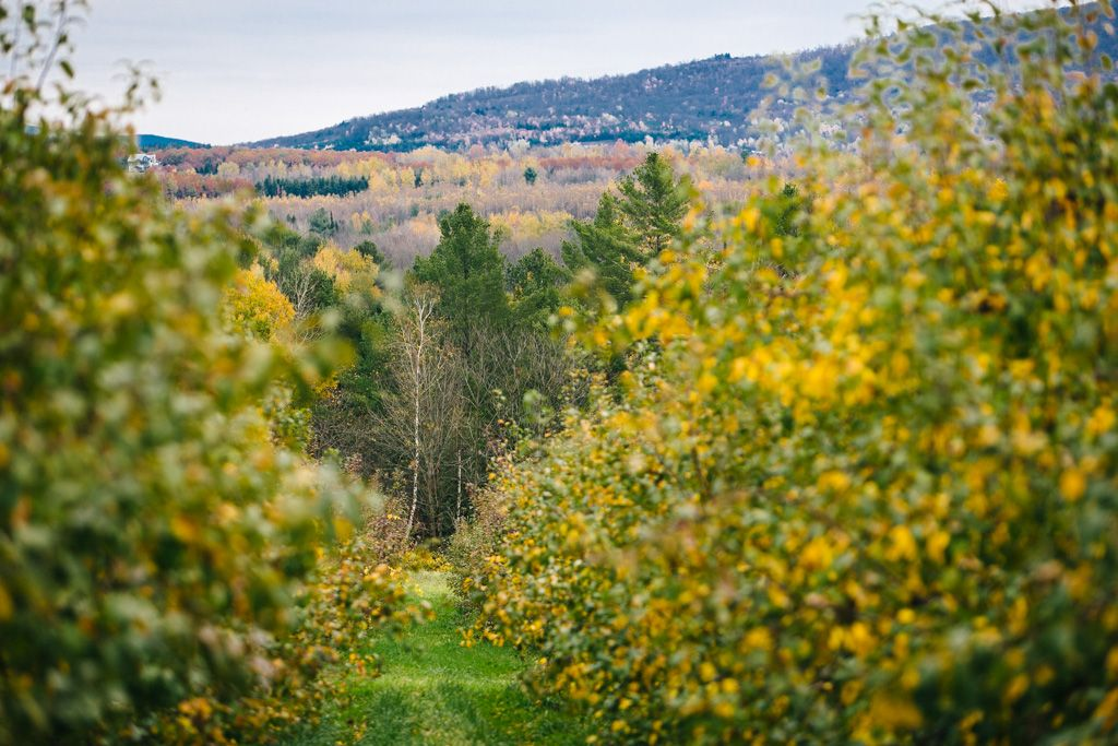 quebec eastern townships road trip