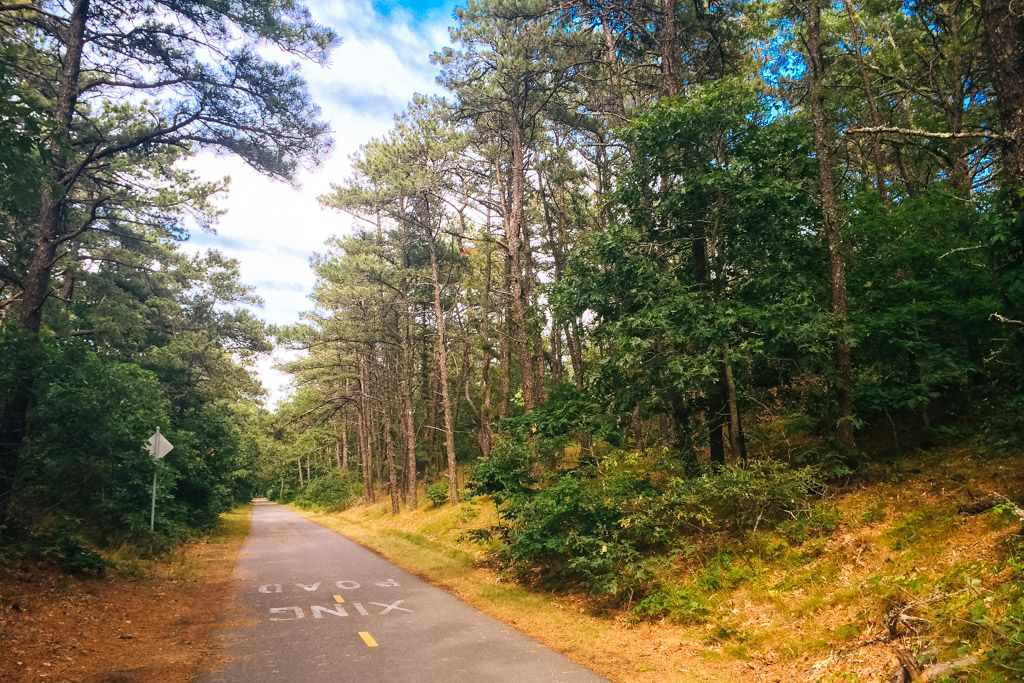 Cape Cod Bike Trail