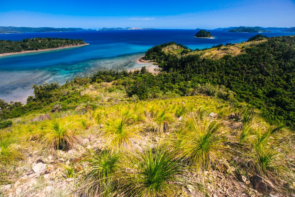 Prettiest places in Australia: South Molle Island