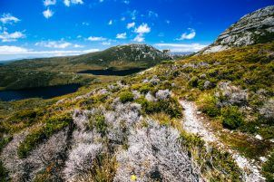 Overland Track tips