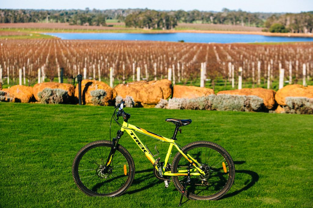 Margaret River cycling wine tour