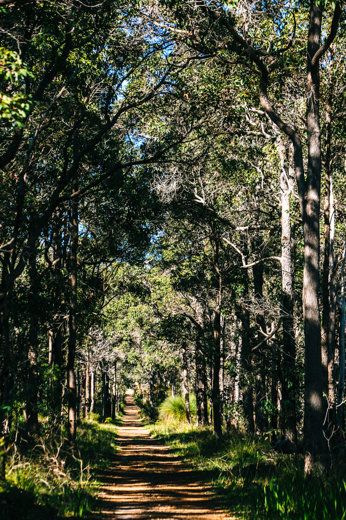 Margaret River cycling