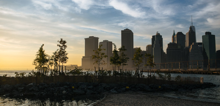 Brooklyn Bridge Park in NYC