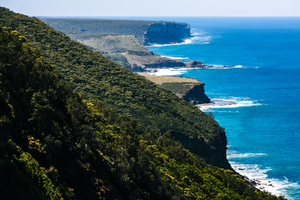 Royal National Park coast track