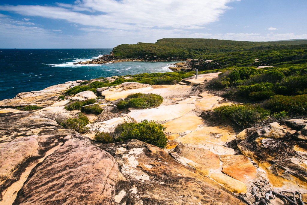 Royal National Park coastal track