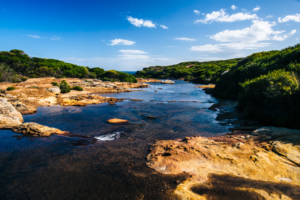 Royal National Park walks