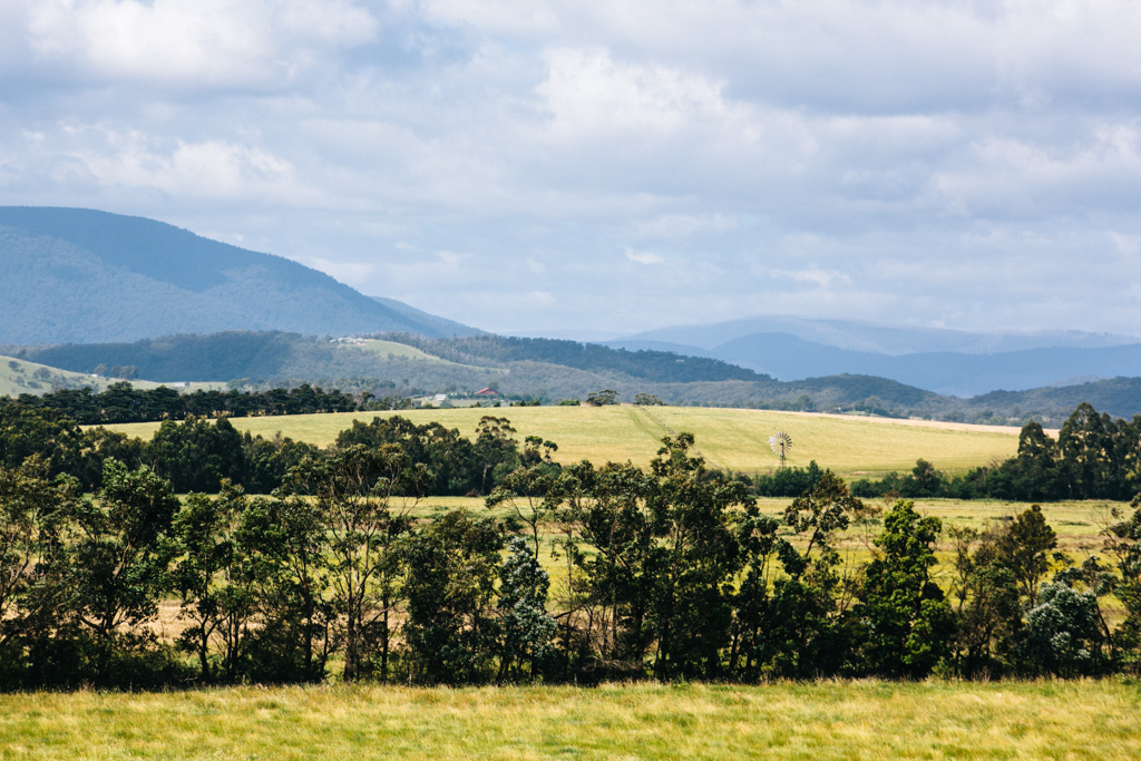 Yering Station - Yarra Valley