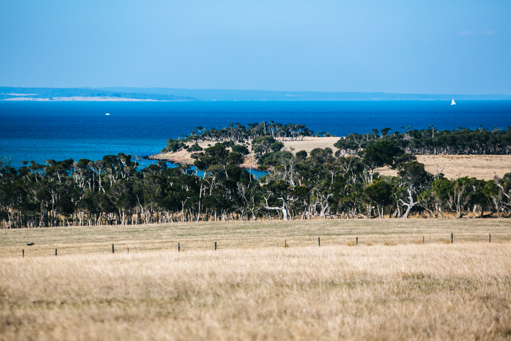 Phillip Island countryside