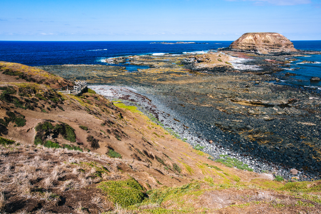 phillip island day trip