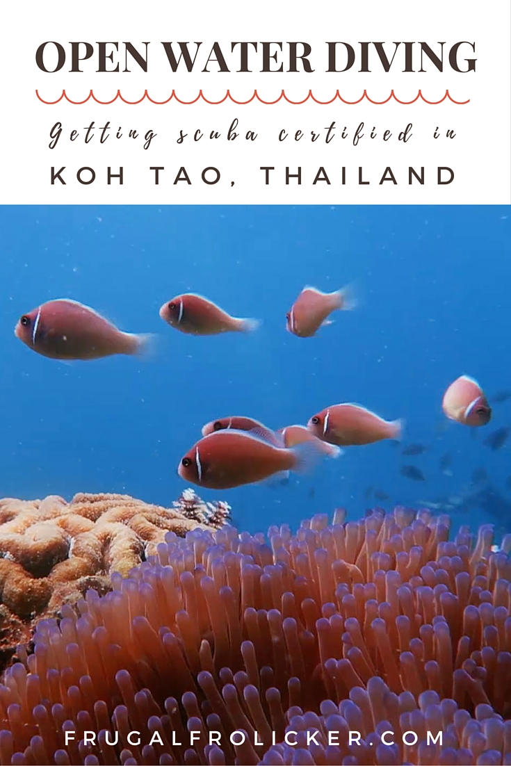 Open Water Diving Course in Koh Tao