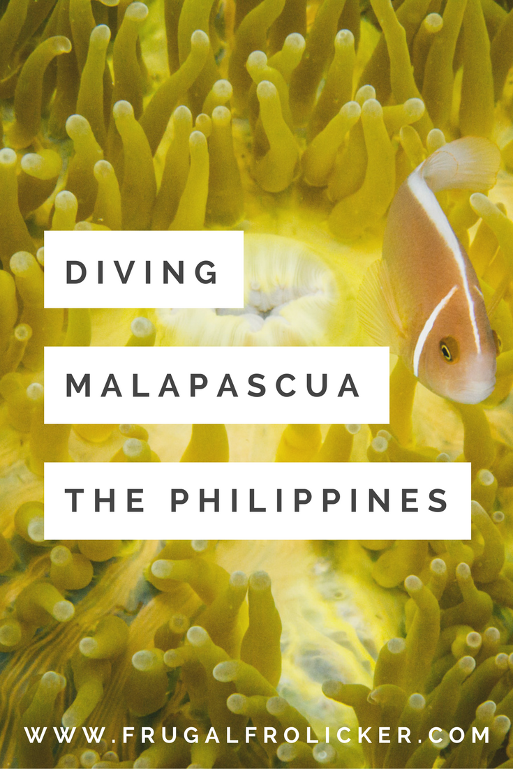 Diving Malapascua in the Philippines