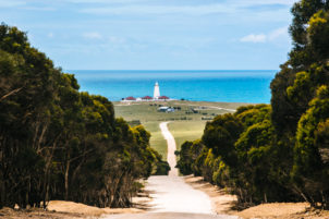 kangaroo island things to do
