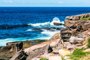 maroubra to coogee walk