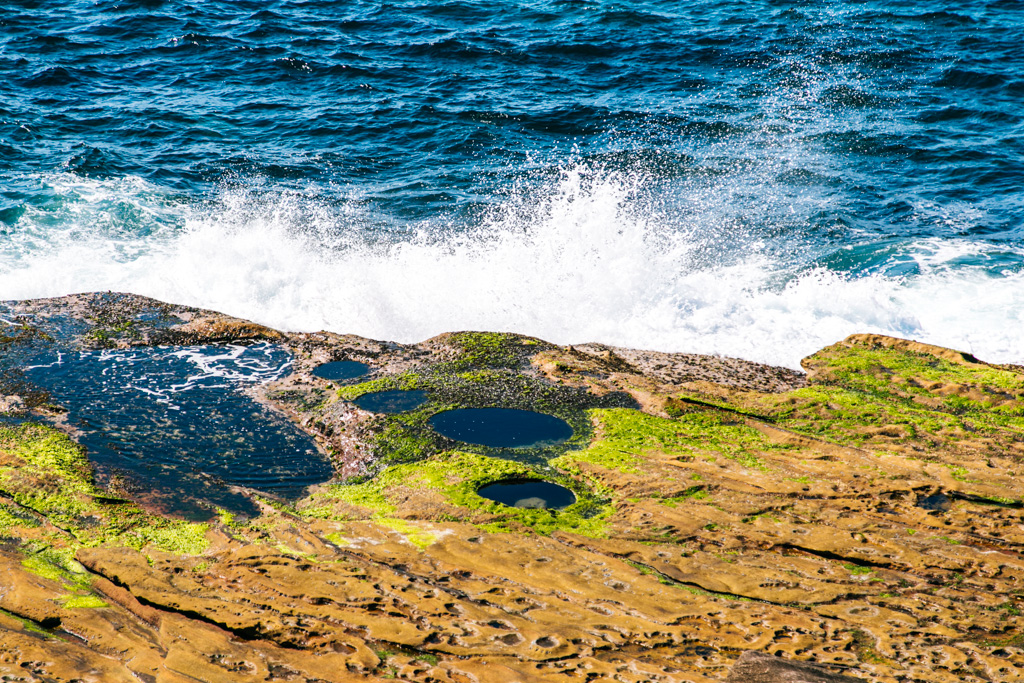 maroubra to coogee coastal walk