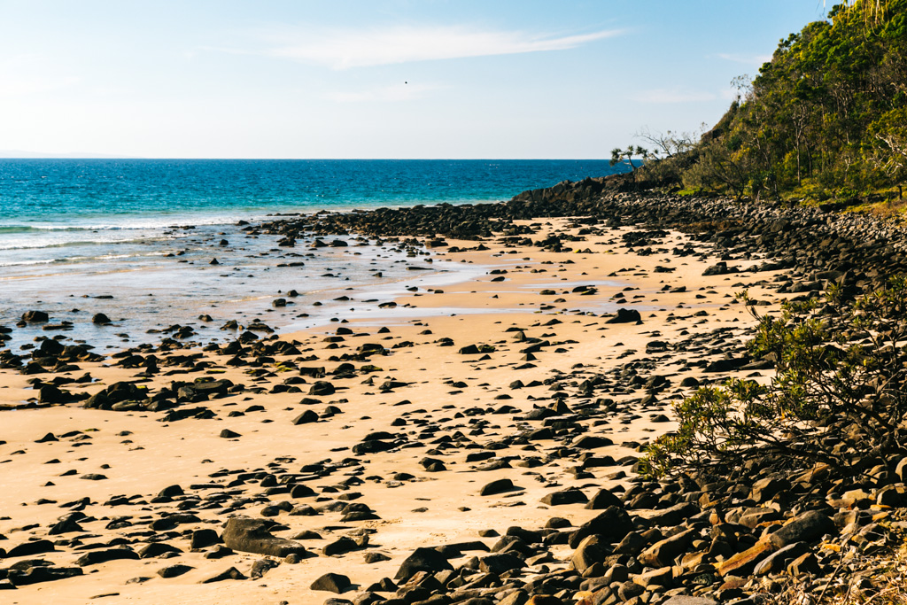 beach in noosa national park
