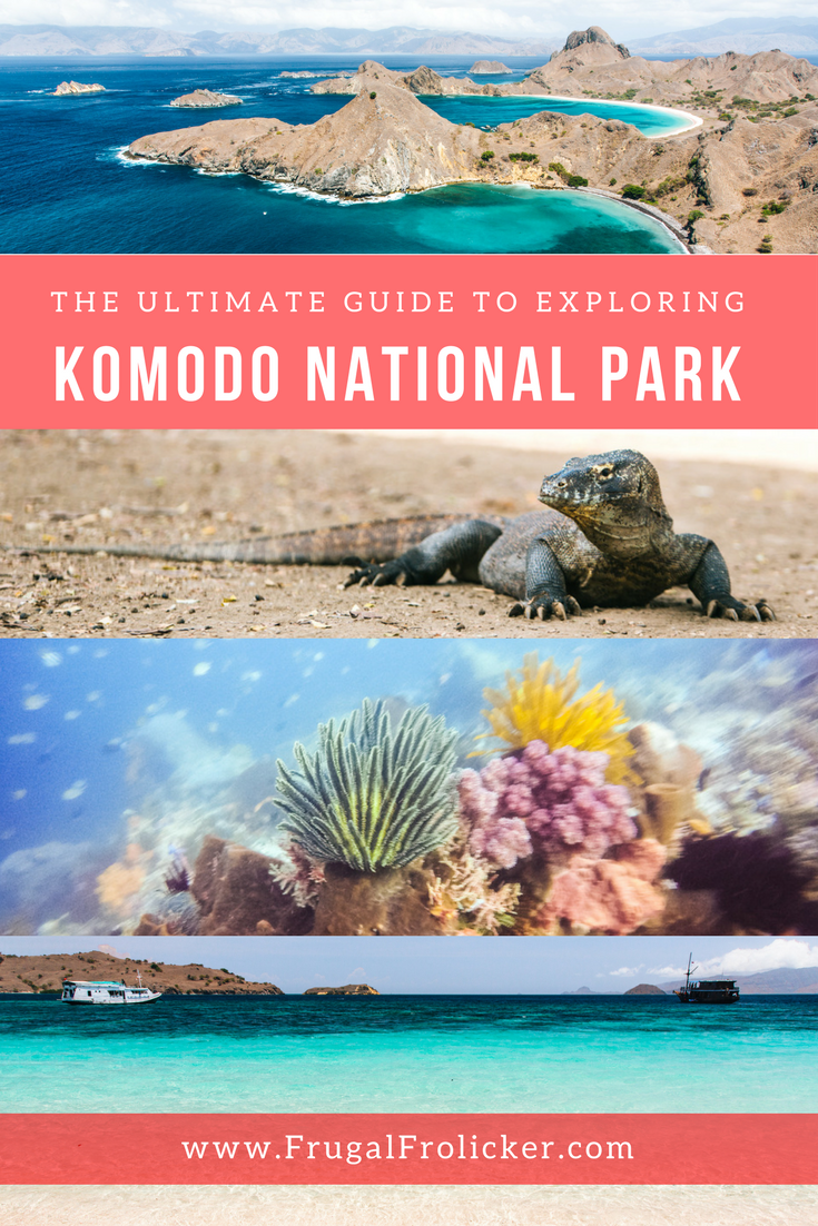 A Guide to Komodo National Park in Indonesia
