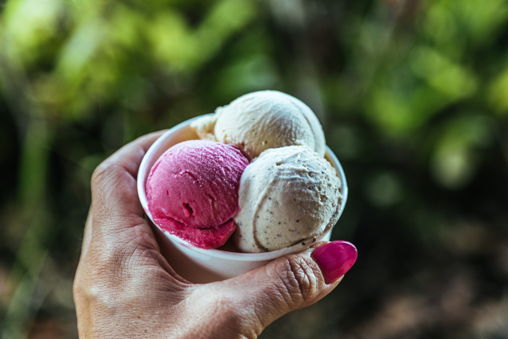 daintree ice cream co