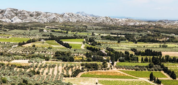 things to do in les baux de provence