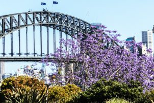 Things to do Sydney harbour