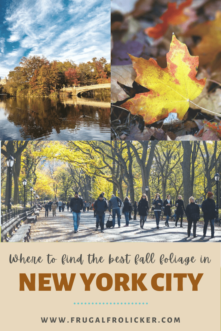 New York Fall Foliage - where to find the best fall foliage in NYC