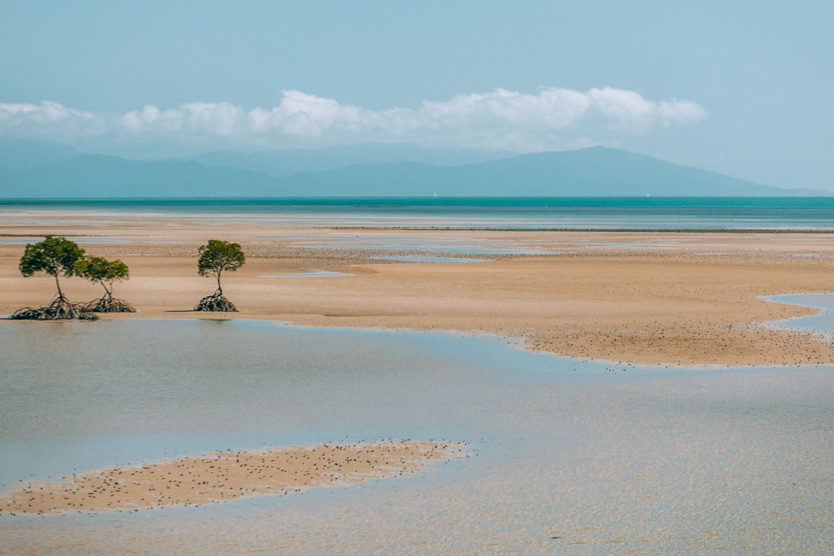 best things to do port douglas