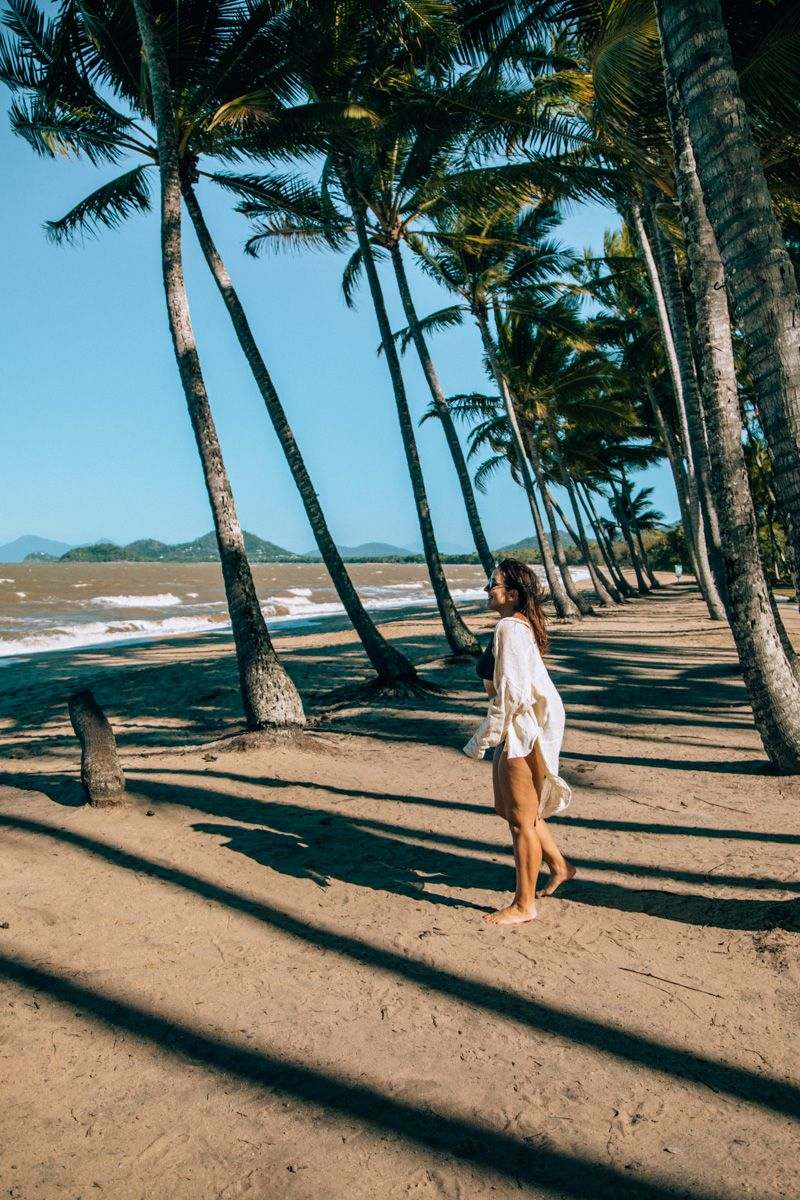 day trips from port douglas
